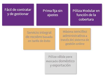 Características póliza PY