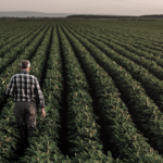 Política Agraria Comunitaria