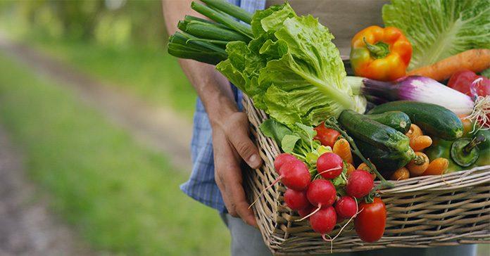 Exportaciones frutas y hortalizas
