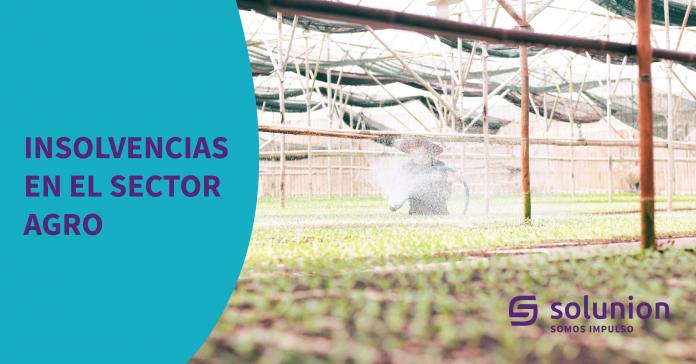 Insolvencias-sector-agro_Mesa de trabajo 1