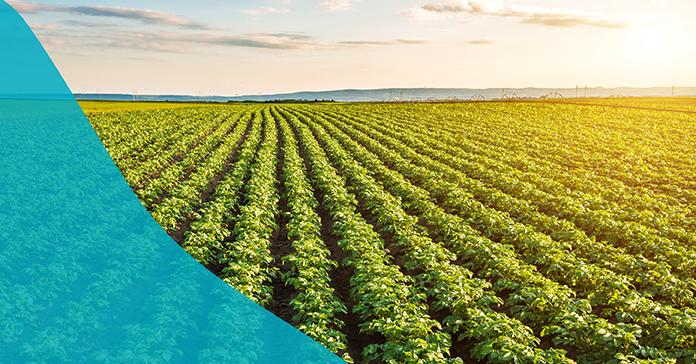Nueva Cobertura Sector Agro